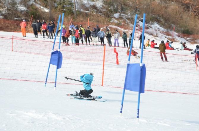 12일 오후 강원 횡성군 웰리힐리파크에서 열린 '스키로봇 챌린지'에서 1위를 차지한 스키로봇 '태권브이'가 기문(깃발)을 통과하고 있다. - 횡성=전승민 기자 enhanced@donga.com 제공